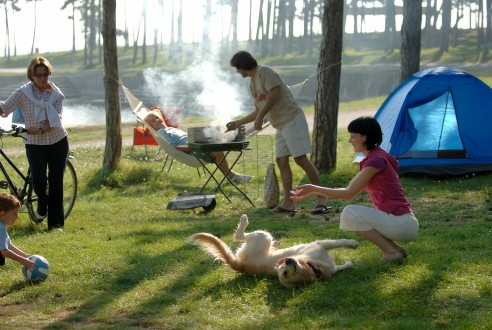 Camping-Igor Zirojevic
